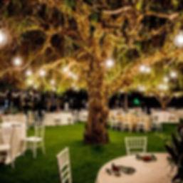 Soñas con una boda asi de hermosa 😍_ Te