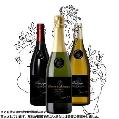 オーガニックワイン3本セット+スペシャルプレゼント🎁!!