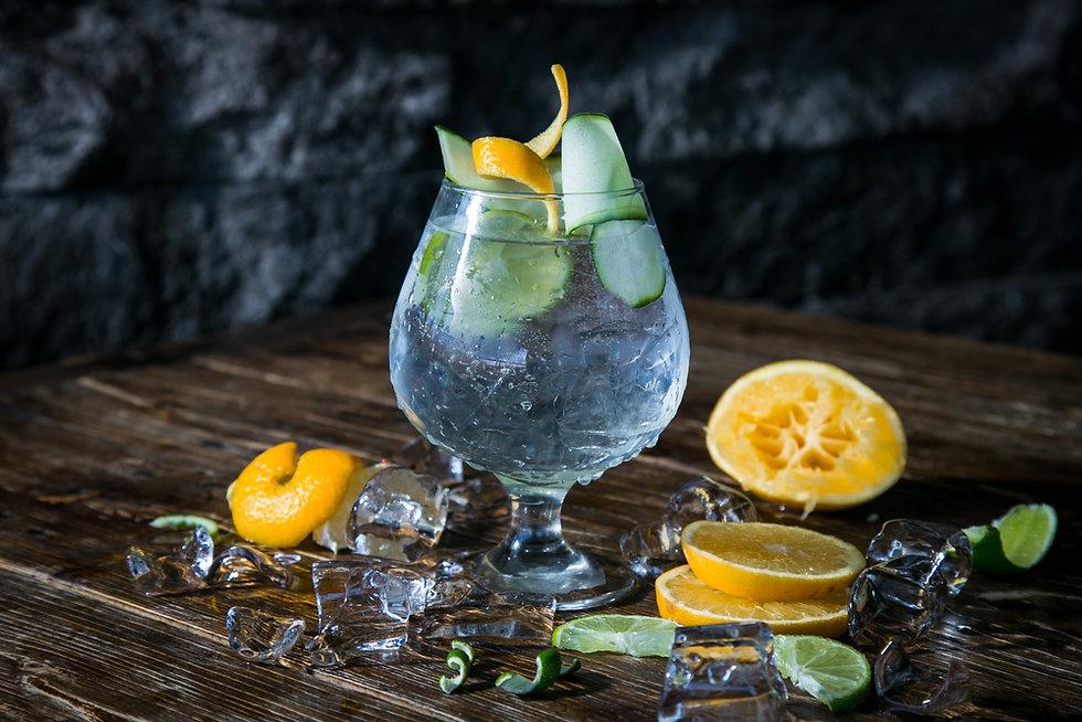 shutterstock_751269310 gin tonic4.jpg