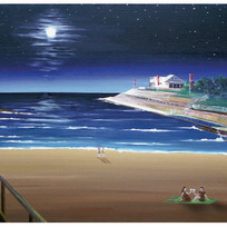 Clovelly Beach by Full Moon