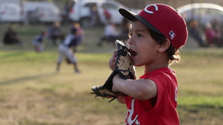 Whittier Tee Ball Pony League - (Private Client)