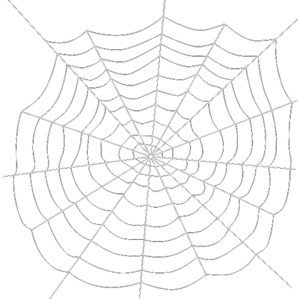 spiders-web-transparent-background (1).p