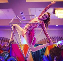 Aerial Gymnast