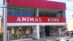 Animal King 2.jpg