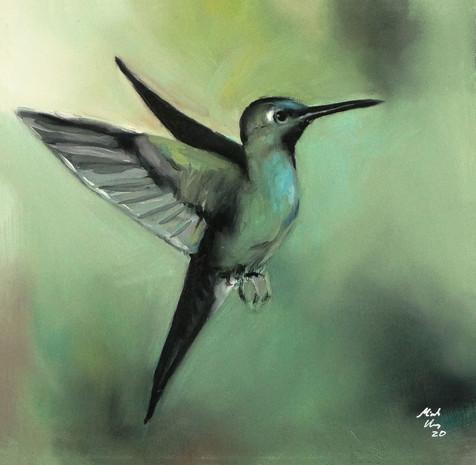Hummingbird cropped.jpg