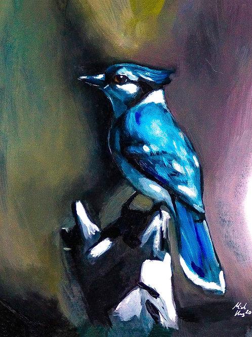 """""""Blue Jay"""" - Fine Art Print - A4"""