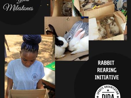 Rabitt Rearing initiative