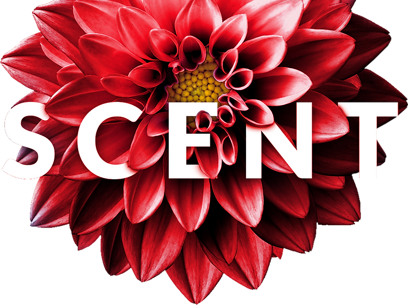flower (1).png