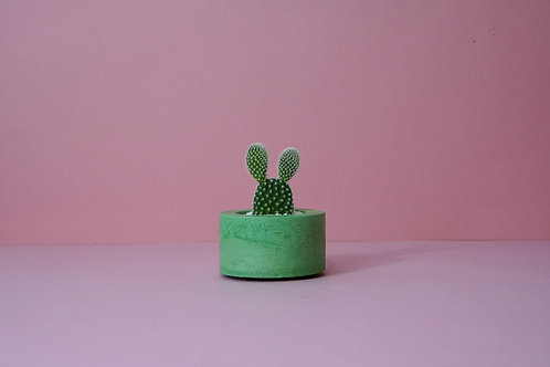 Round Concrete Mini Planter