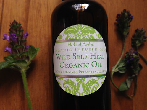 SELF-HEAL INFUSED OIL - Wild Prunella vulgaris in organic olea europaea