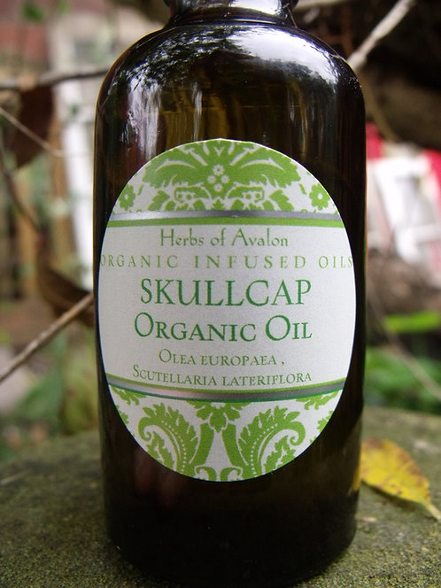 SKULLCAP INFUSED OlL - Organic Scutellaria lateriflora - Soothe Nervous System