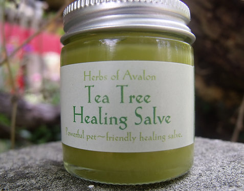 TEA TREE HERBAL SALVE - Organic salve with a plethora of uses -