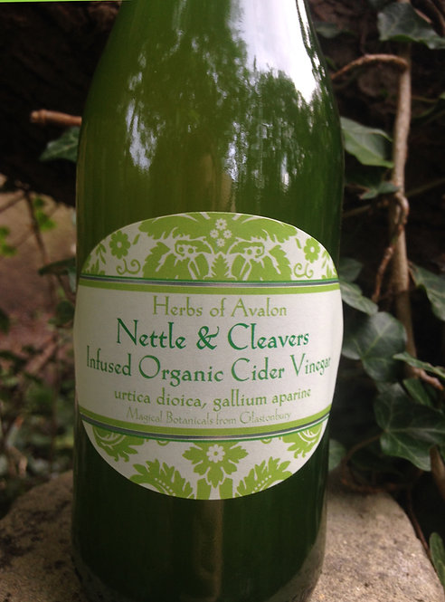 Wild Nettle & Cleavers Infused Herbal Organic Cider Vinegar Spring Tonic