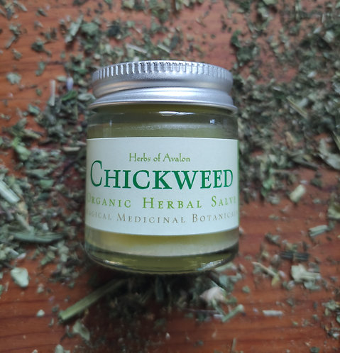 CHICKWEED SALVE - Organic, Gentle & Mild