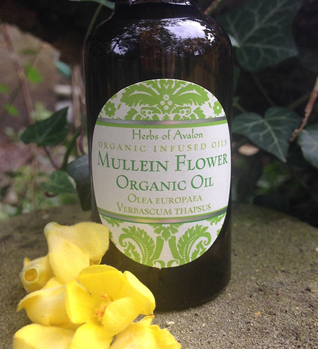 MULLEIN FLOWER INFUSED OIL  - Organic herbal healing oil - Verbascum thapsus