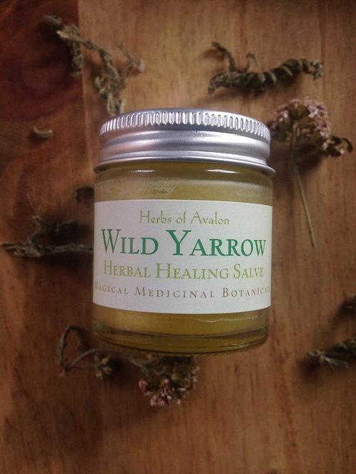 YARROW HERBAL SALVE - Organic healing ointment - Wild Achillea Millefolium