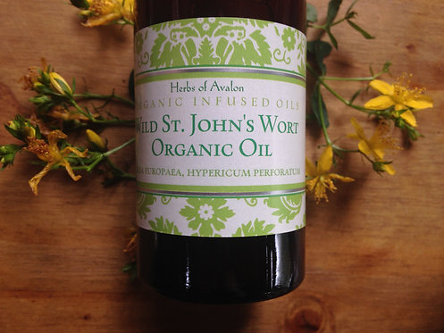ST JOHN'S WORT INFUSED OIL - Organic & Wild Hypericum perforatum nerve musc pain