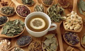 GREEN CHAI TEA BLEND - Antioxidant-rich with a spicy warmth