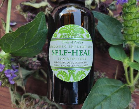 SELF-HEAL INFUSED OIL - Wild Prunella vulgaris in organic olea europaea