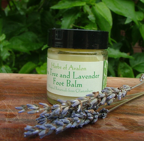 TEA TREE AND LAVENDER FOOT BALM - Organic anti-fungal softening blend