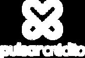 10. Rodapé_Logo-Pulsar.png