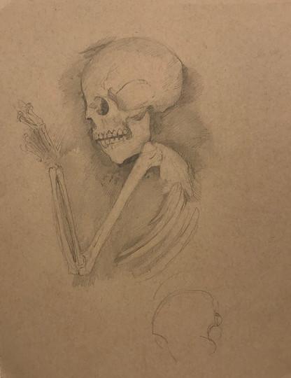 Drawings of Human Remains