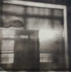 Polaroid No.1