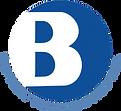 Bayview Technologies Inc. logo