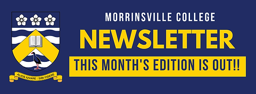 MVC Newsletter FB Image.png