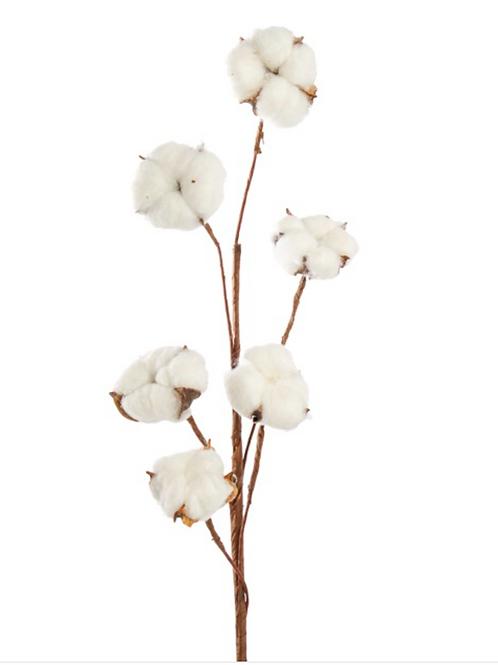 Cotton Branch 6 Heads (Head Size 5cm) 85cmH