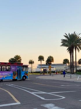 crosswalk and bus.png
