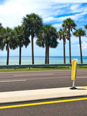 courtney campbell causeway.png