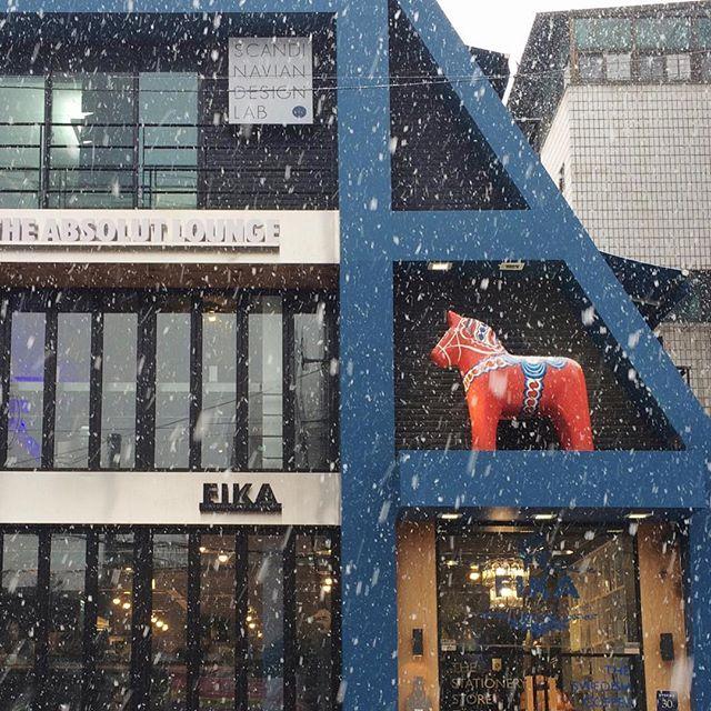 눈 오는 피카🌨🌨 #피카 #피카가로수길점 #가로수길카페 #가로수길맛집 #눈오는날 #눈 #fika #dessert #swedish #dalahorse #absolutlounge