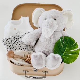 Aydi The Elephant Jungle Box