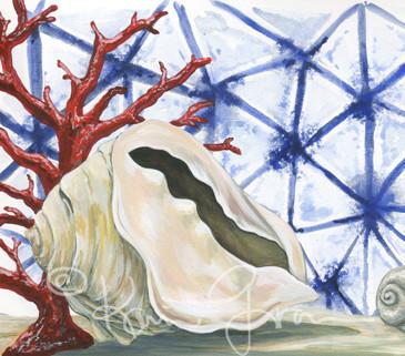 Seashells and Coral
