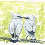 Honeymooners