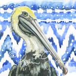 Ikat Pelican