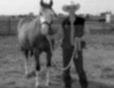 founder of deaf horse association, skipper, deaf horse, splashed white paint horse