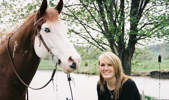 Deaf horse, Splashed White Paint Horse