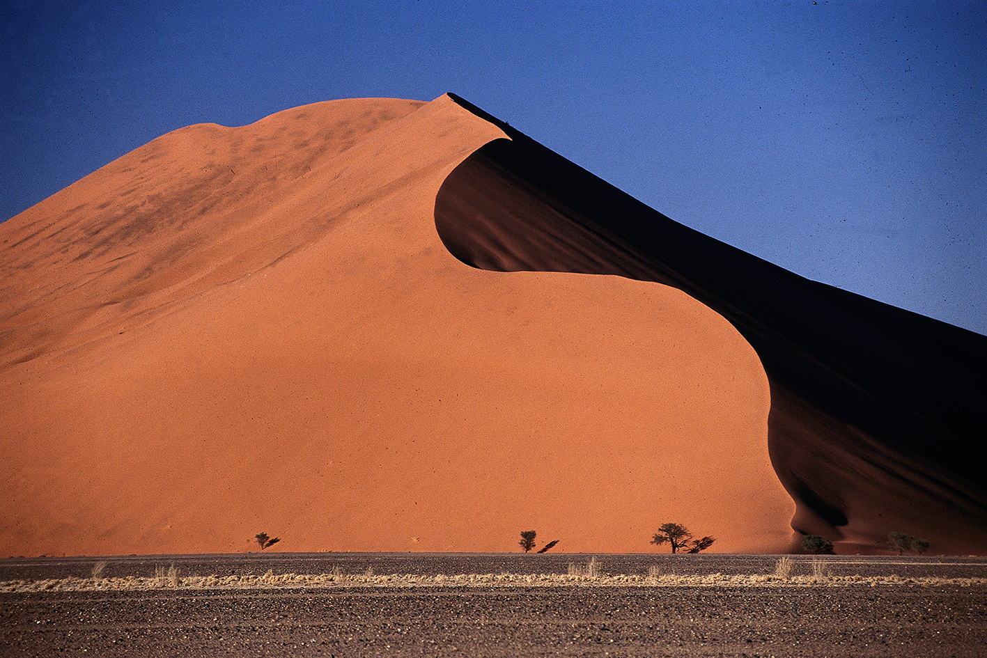Duna. Sesriem, Namibia