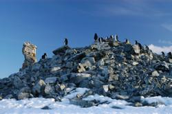 Half Moon Bay. Shetlands