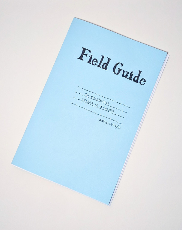 Field Guide to Existential Crises in Dreams