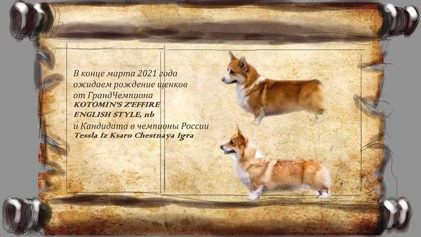 Помет-ЗефирТесла-700x394.jpg