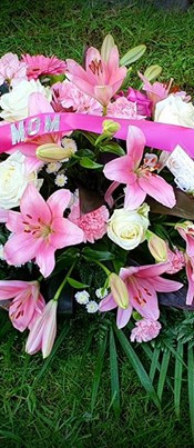 photo_1826404597441019.jpg