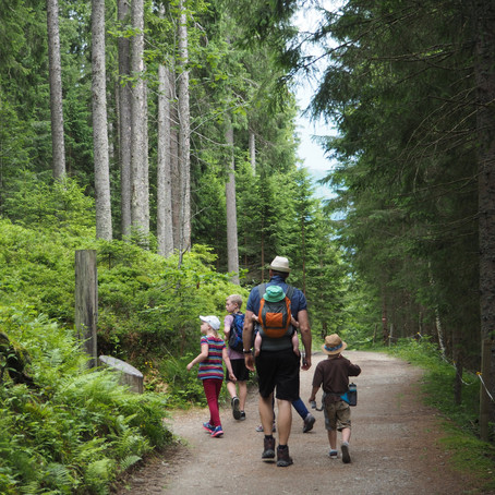7 essential elements for a Gilbert family walk