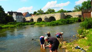 Seaweed in the Danube