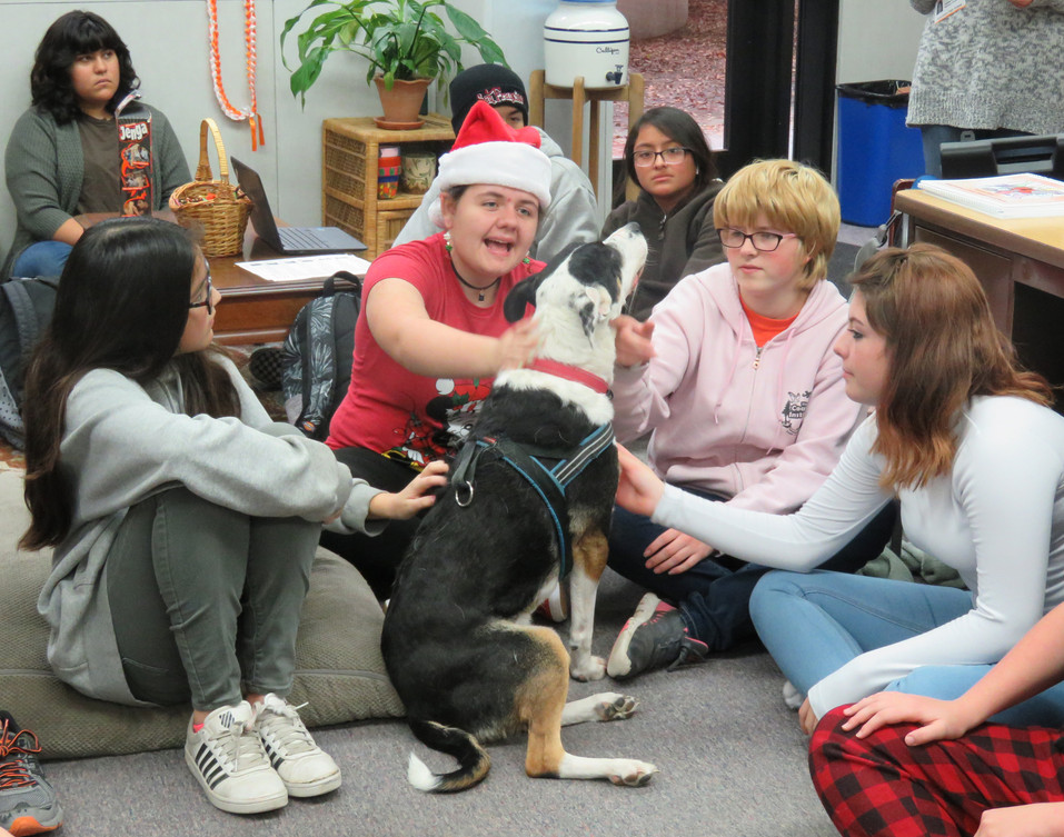 Woods Humane Society visits AHS for presentation
