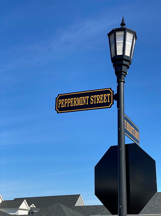 Peppermint%2520street_edited_edited.jpg