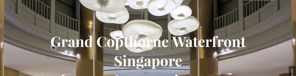 Grand Copthorne Waterfront Singapore 5 S