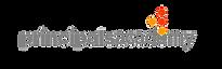 PAI_Logo transparent.png